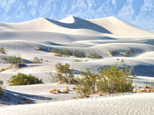 """Zdjęcia: Death Valley NP, California, """"Mała Sahara"""" w Dolinie Śmierci, USA"""