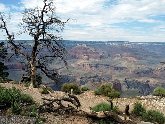 Zdjęcia: Grand Canyon NP, Arizona, South Rim GC, USA