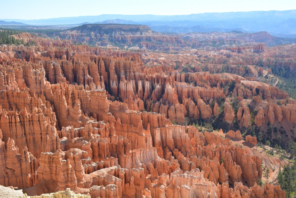 Zdjęcia: Brice Canyon N.P , Utah, Panorama na Brice Canyon N.P , USA