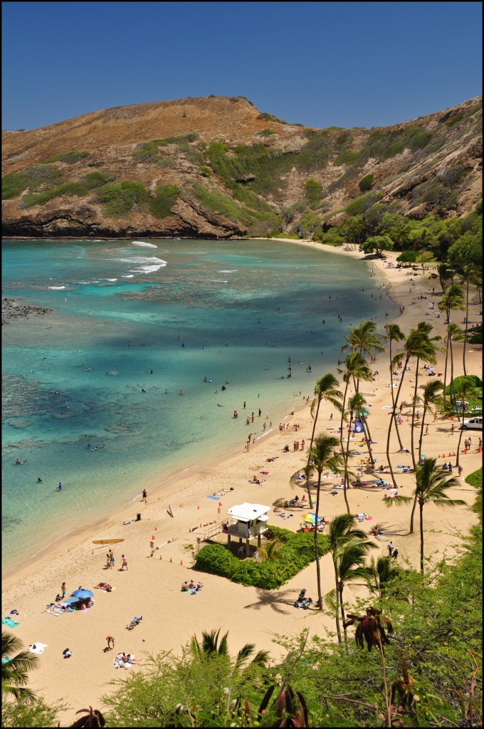 Zdjęcia: Honolulu, Oahu, Hanauma Bay, USA