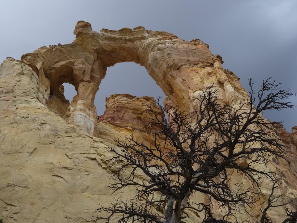 Zdjęcia: Utah, Cottonwood Canyon Road - Grosvenor Arch  1, USA