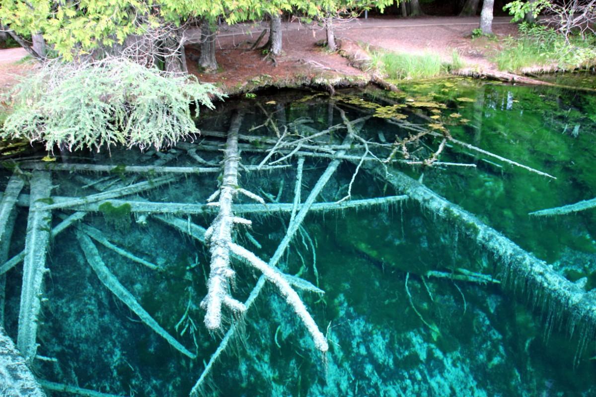 Zdjęcia: Upper Peninsula, Michigan, Żródełko Kitch-iti-kipi, USA