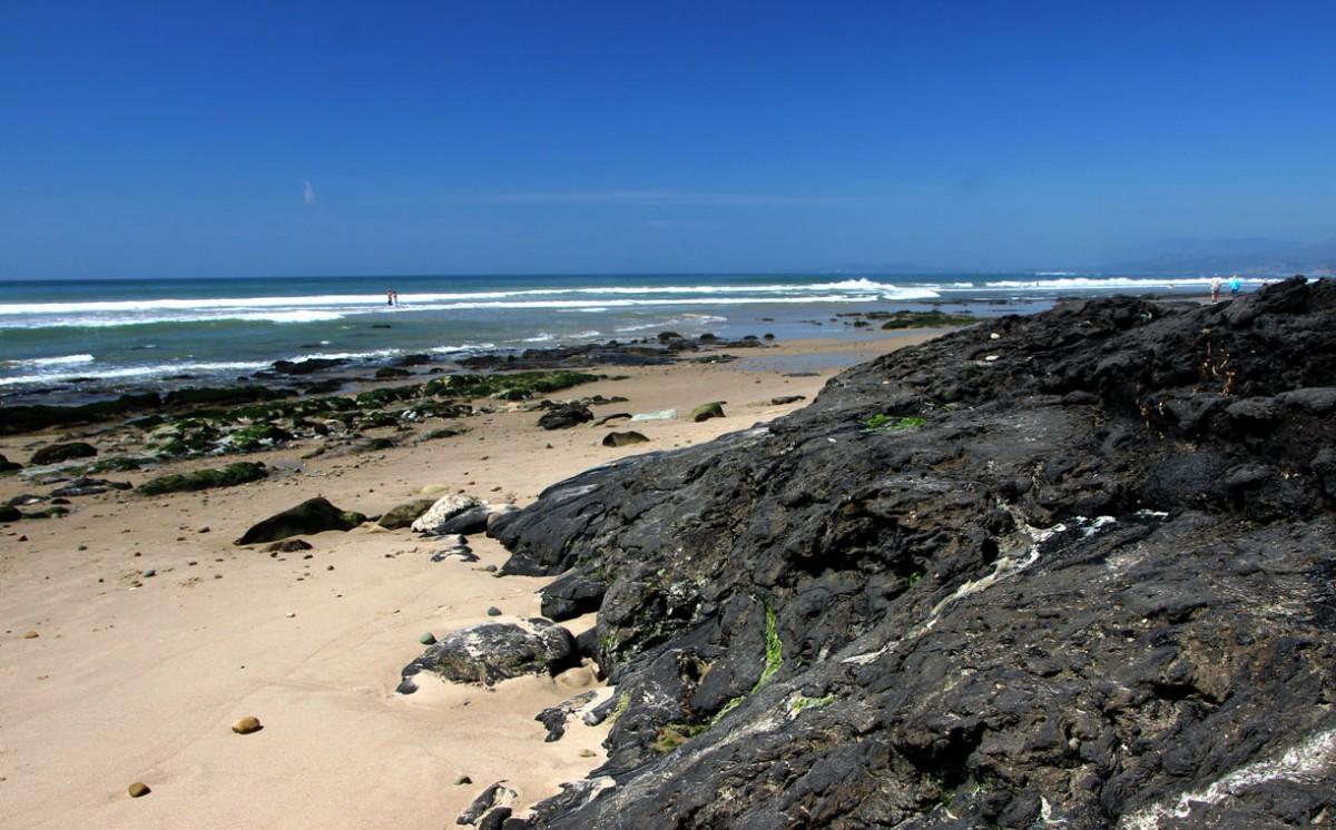 Zdjęcia: Santa Barbara County, Kalifornia, Carpinteria - asfaltowa plaża, USA