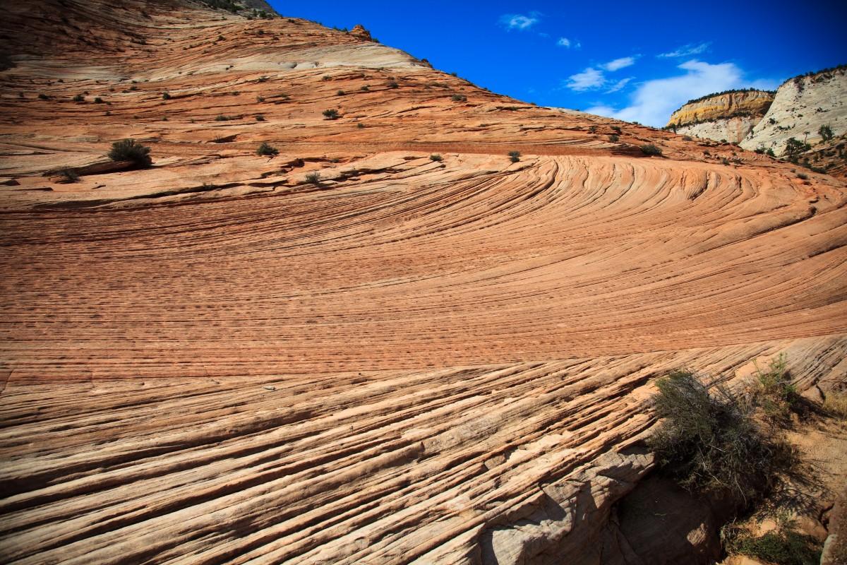 Zdjęcia: Zion National Park, Utah, Zion National Park, USA
