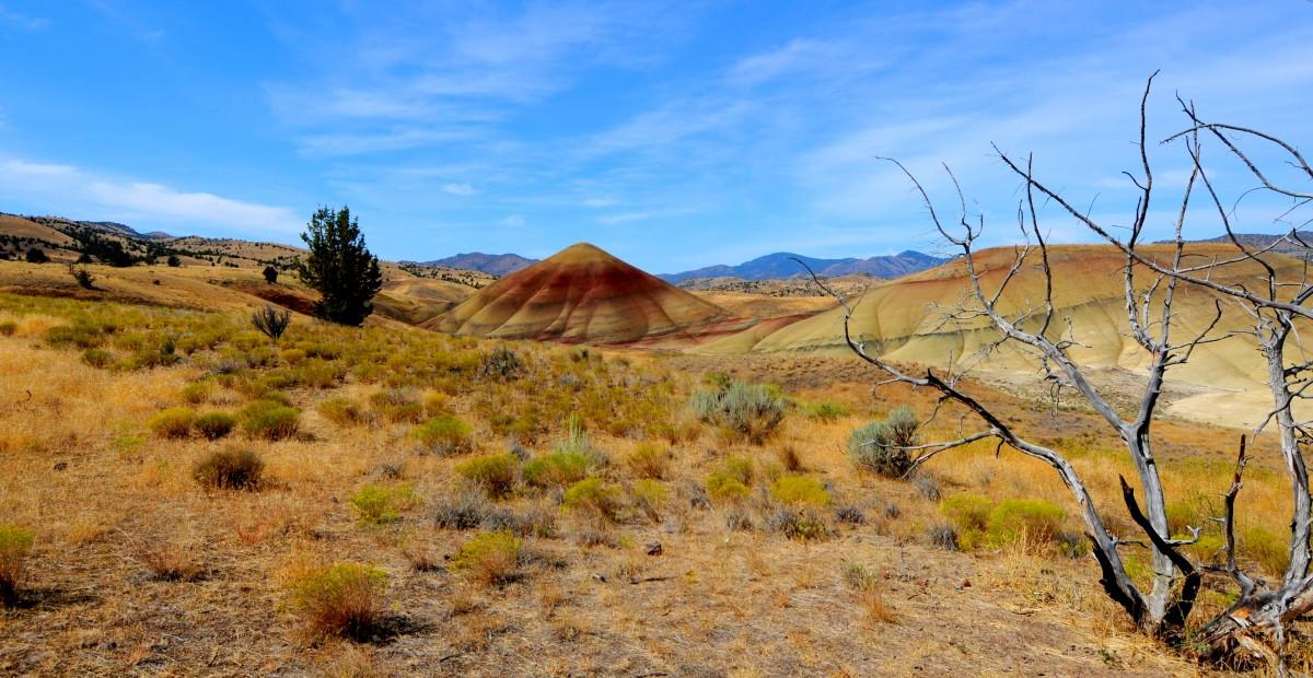 Zdjęcia: Painted Hills, Oregon, Babka piaskowa, USA