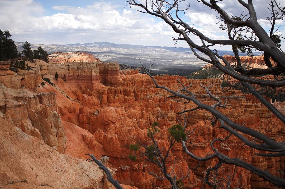 Zdjęcia: Bryce Canyon, Utah, Widok Kanionu z góry, USA