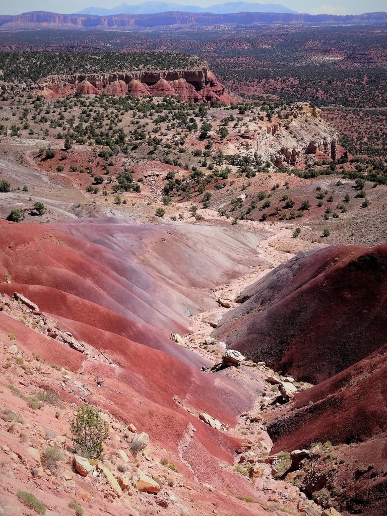 Zdjęcia: Środkowa część trasy, w oddali Henry Mountains, Utah, Wyjątkowa, kolorowa, mało uczęszczana Burr Trail Road, USA