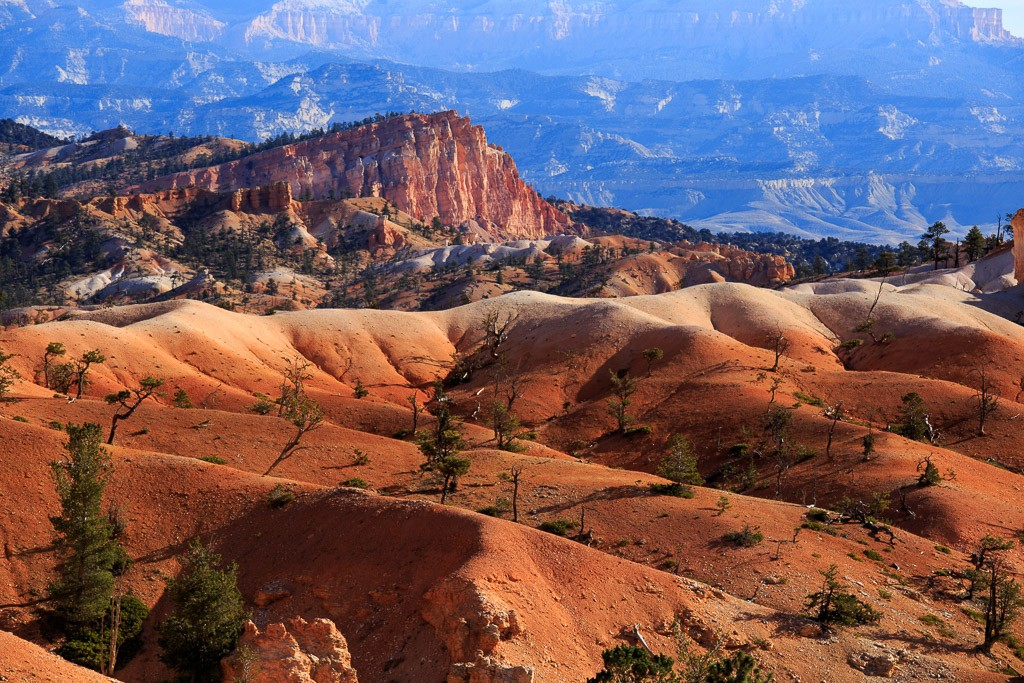 Zdjęcia: Bryce Canyon NP, Utah, Bryce, USA