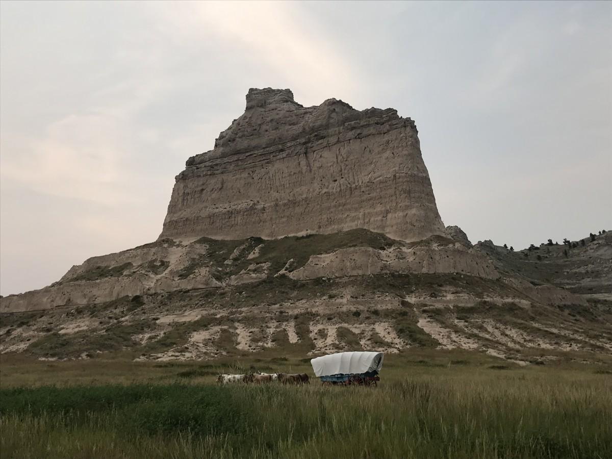 Zdjęcia: Nebraska , Nebraska , Wśród dzikich traw, USA