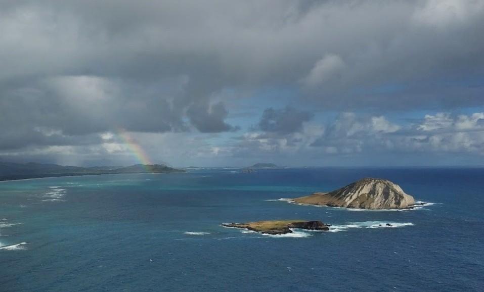 Zdjęcia: Honolulu - okolice, Hawaje, relaks egzotyczny, USA