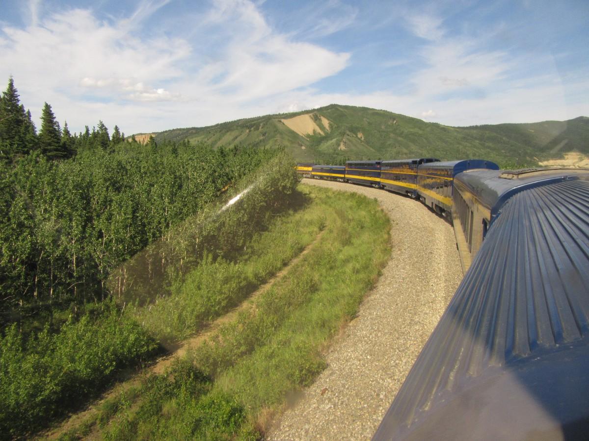 Zdjęcia: Anchorage - Alaska, Anchorage - Alaska, Przejazd z Anchorage do Fairbanks, USA