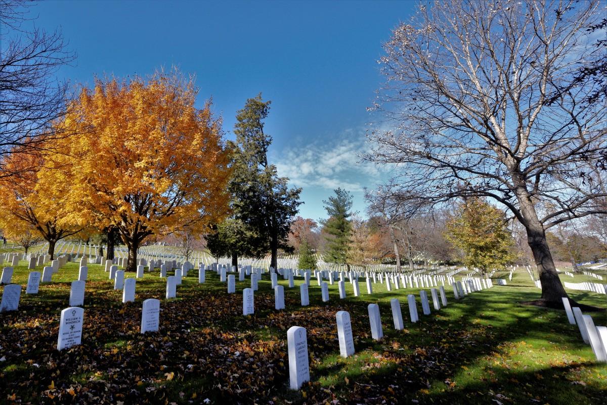 Zdjęcia: Cmentarz Arlington, Washington DC, Barwy jesieni, USA