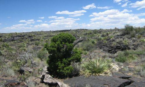 Zdjęcie USA / Nowy Meksyk / Na południe od Albuquerque / Pustynia magmowa