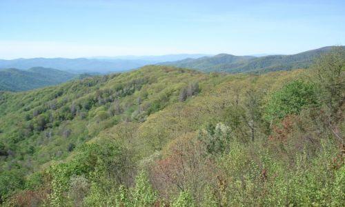 Zdjęcie USA / Północna Karolina / Tennesee / Park Narodowy Great Smokey Mountains / Jak nasze Bieszczady (II)