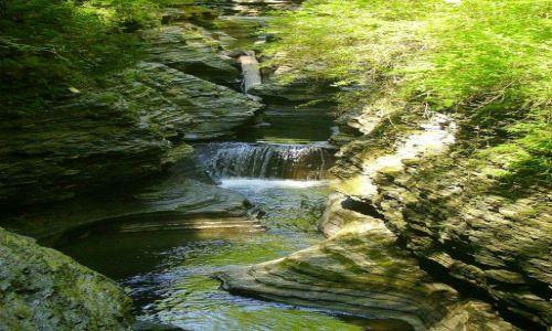 Zdjecie USA / stan Nowy York / Watkins Glen State Park - Finger Lakes / fragment trasy w Watkins Glen State Park