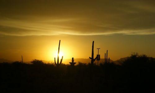 Zdjęcie USA / Phoenix / USA / Kombojski zachód słońca
