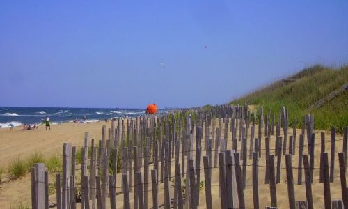USA / North Carolina / Outer Banks / ochrona wydm na plaży w Kill Devils Hill