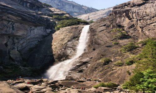 Zdjecie USA / California / Yosemite NP / Welon panny młodej