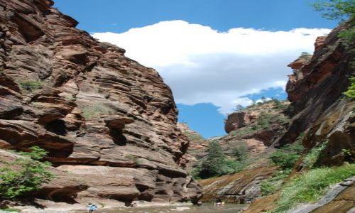 Zdjecie USA / Utah / Zion NP / Narrows hike