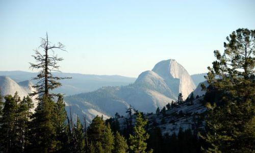 Zdjecie USA / California / Yosemite NP / Half Dome