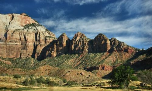 Zdjecie USA / Utah / Zion NP / Zion NP