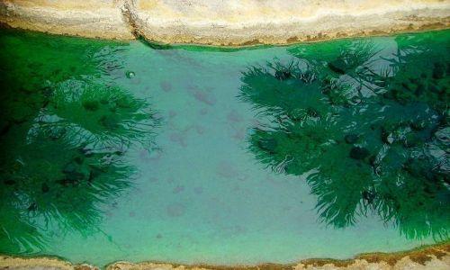 Zdjecie USA / North Carolina / Outer Banks - Emerald Island /