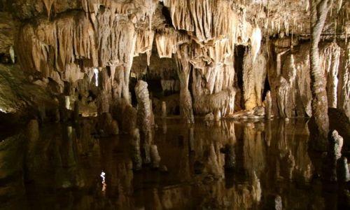 Zdjecie USA / - / Missouri / Wyzyna Ozark / Jaskinie Meramec