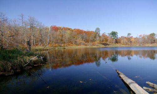 Zdjęcie USA / - / minnesota / Jezioro Kasey