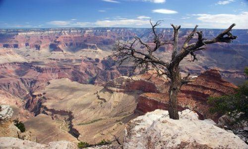 USA / Arizona / Grand Canyon NP / Grand Canyon