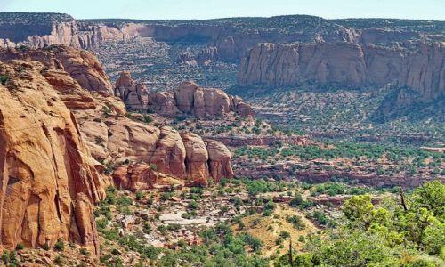 Zdjecie USA / Arizona / Navajo NP / Ujęcie jednego z wąwozów Nawajo