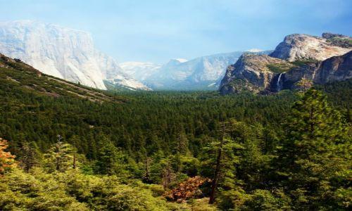 Zdjęcie USA / Kalifornia / Yosemite NP / Prawie jak w raju