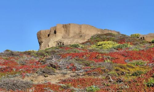 Zdjecie USA / California / Big Sur / kolorowe wzgórza