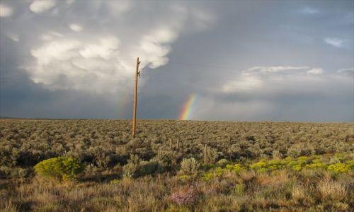 Zdjęcie USA / New Mexico / US Highway 550 / po burzy na pustyni