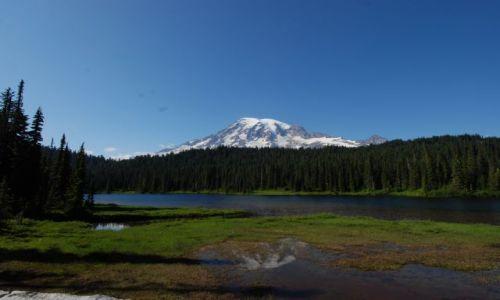 Zdjęcie USA / Washington / Mount Rainier / Jeziorko
