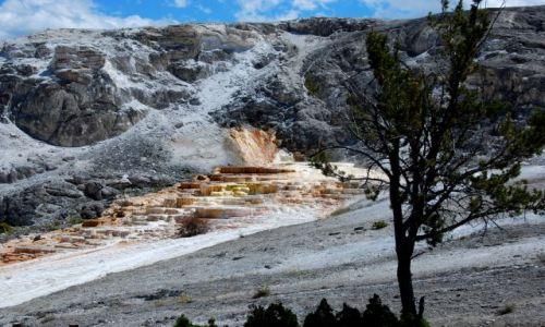 Zdjęcie USA / Montana / Yellowstone / Mammoth Hot Springs