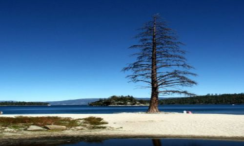 Zdjecie USA / california / lake tahoe, emerald bay / kind of blue