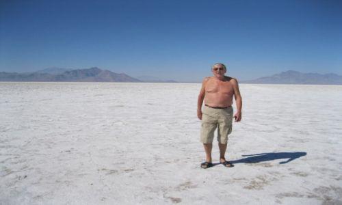 Zdjecie USA / - / Stan Nevada / Na pustyni  Nevada