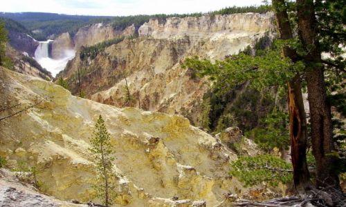 Zdjecie USA / Wyoming / Yelowstone Nat.Park / kanion  Yelowstone River