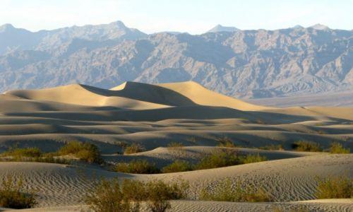 Zdjecie USA / California / death valley / piaski death valley...