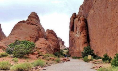 Zdjęcie USA / Utah / Arches NP / Wejście do devil's garden