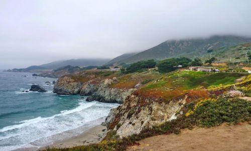Zdjecie USA / California / Monterey / Brzeg oceanu nieopodal Monterey