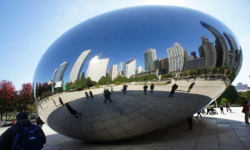 Zdjęcie USA / Illinois / Chicago / Wielkie jajo