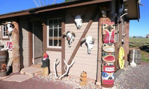 Zdjęcie USA / Nevada / w drodze / Totemy Indian Navajo