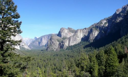 Zdjęcie USA / California / Yosemite / Yosemite - w parku