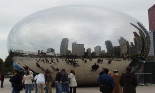 Zdjęcie USA / ILLINOIS / CHICAGO / FASOLA