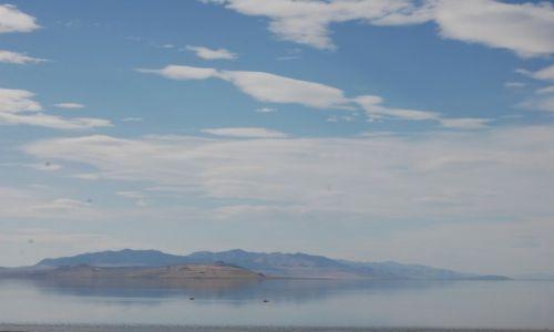 USA / Antylope  / Utah / Antelope Island State Park