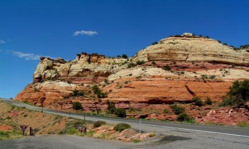 Zdjecie USA / Utah / Zion National Park / Przy drodze