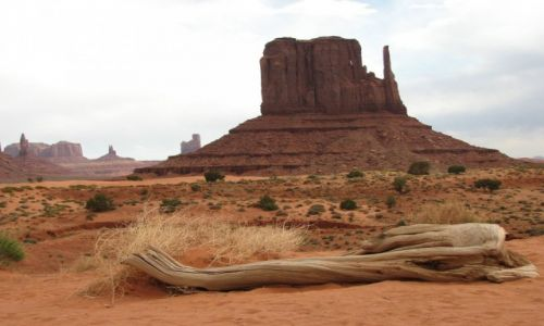 Zdjecie USA / Utah/Arizona / Monument Valley / Dolina pomników