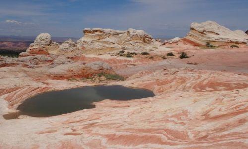 USA / Arizona / White Pocket, Wermilion Cliffs / Na innej planecie - WHITE POCKET