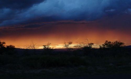 Zdjecie USA / - / Utah - Escalante / Cottonwood Canyon Road - po burzy